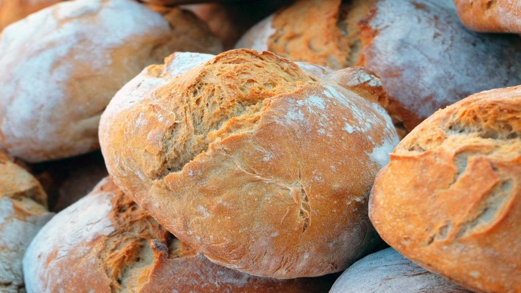 El pan y sus reglas1920